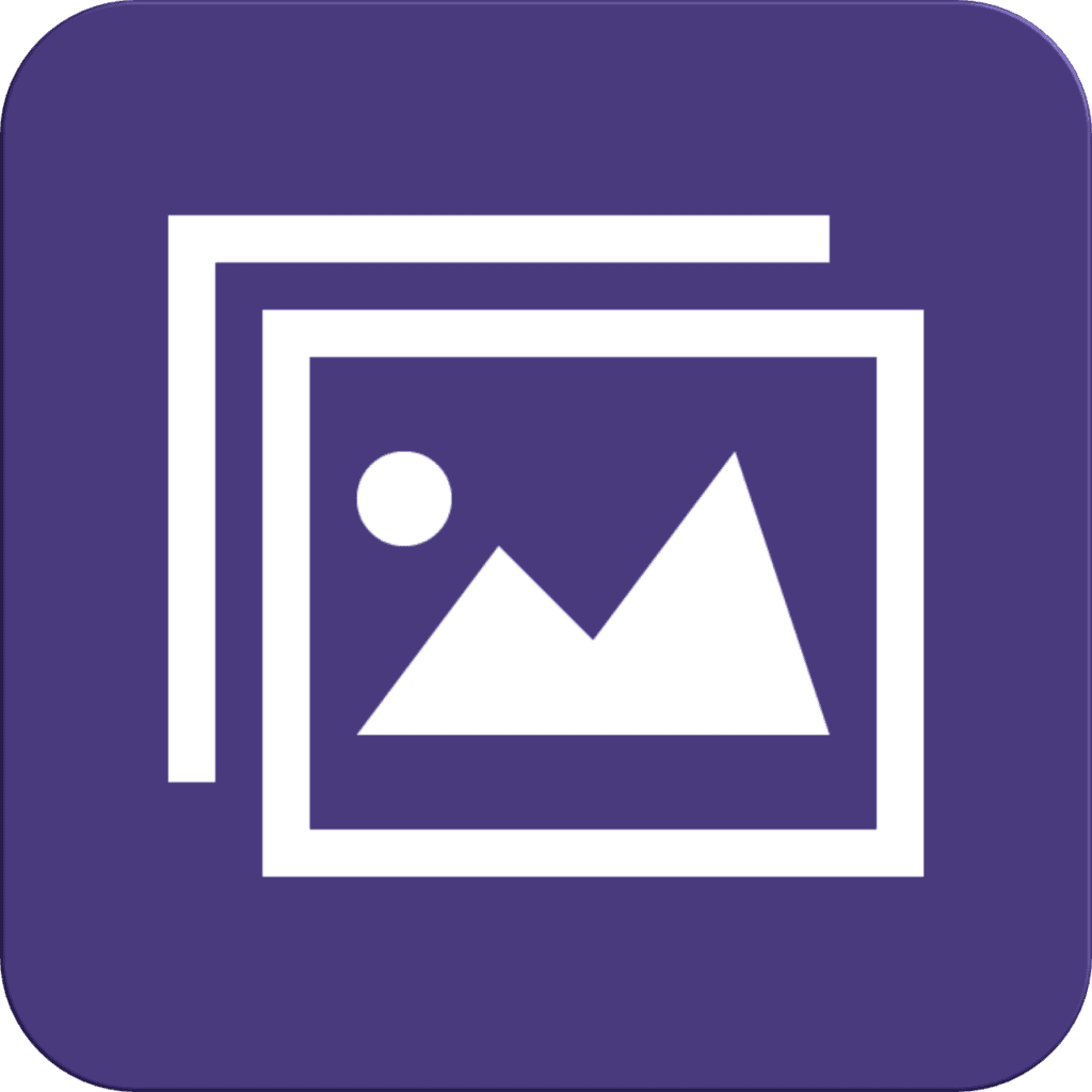 WordPress Theme with Custom Layouts Function